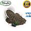 Чиа семена (Аргентина) Вес: 250 гр, фото 2