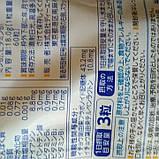 Гинкго Билоба. Стимуляция работы мозга и нервной системы. Курс 60 шт. на 20 дн, DHC Япония, фото 2