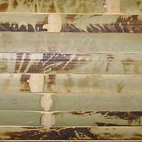 Обои бамбуковые 0.9x10 м черепаховые 17 мм