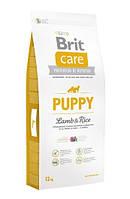 Сухой корм Brit Care (Брит Кеа) Puppy Lamb & Rice для щенков всех пород (ягненок и рис) (Вес: 1 кг)