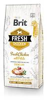 Сухой корм Brit Fresh (Брит Фреш) Chicken with Potato Adult Great Life для взрослых собак всех пород (курица) (Вес: 12 кг)