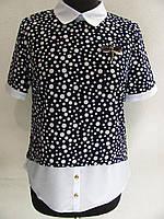 Классическая летняя блуза под юбку или брюки, оригинальный крой, в горох (р-р.56)  Код 1826М