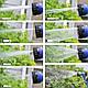 Садовый шланг для полива X-HOSE 30м, поливочный растягивающийся чудо-шланг Стрейч Хоз,насадка распылитель., фото 5