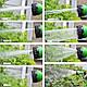 Садовый шланг 45м, для полива X-HOSE 45м, поливочный растягивающийся чудо-шланг Стрейч Хоз,насадка распылитель, фото 7