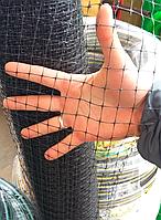 Сетка для птицы в розницу (на метраж). Высота 1.5м (150см).