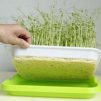 Проращиватель спроутер Sadove микроферма для проращивания семян, выращивания проростков и микрогринов