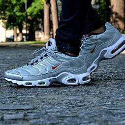 Мужские кроссовки Nike Air Max Tn+ plus Silver серебряные. Топ качество! Живое фото (Реплика ААА+)