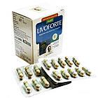 Ливофорте (Livoforte, Nupal Remedies), 50 капс - препарат для печінки, лікування вірусного гепатиту, антиоксидант, фото 3