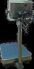 Товарные платформенные весы 300 кг ВПД-405С(FS405S-300), влагозащищенные, фото 7