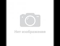 Рамка на номери EL 100 599 нержавійка (срібна) (шт.)