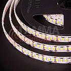 Светодиодная лента AVT New PROFESSIONAL SMD 2835 (120 LED/м), белый теплый, IP20, 12В - бобины от 5 метров, фото 2