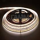 Светодиодная лента AVT New PROFESSIONAL SMD 2835 (120 LED/м), белый теплый, IP20, 12В - бобины от 5 метров, фото 3