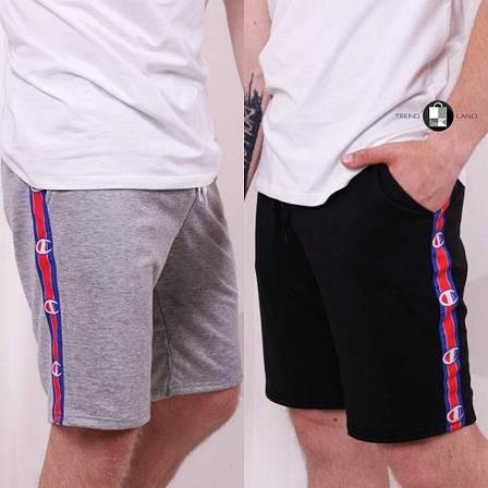 Мужские спортивные шорты с лампасами в стиле Champion 2 цвета в наличии, фото 2