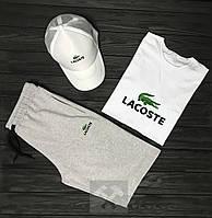 Мужской летний костюм Lacoste (Лакост) комплект 3 в 1