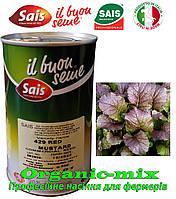 Микрогрин, горчица салатная красная RED Mustard / КРАСНЫЙ МУСТАРД  Sais (Италия), банка 500 грамм.