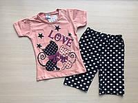 Пижама детская с кошечками для девочки от 1 до 3 лет персиковая с шортами в горошек