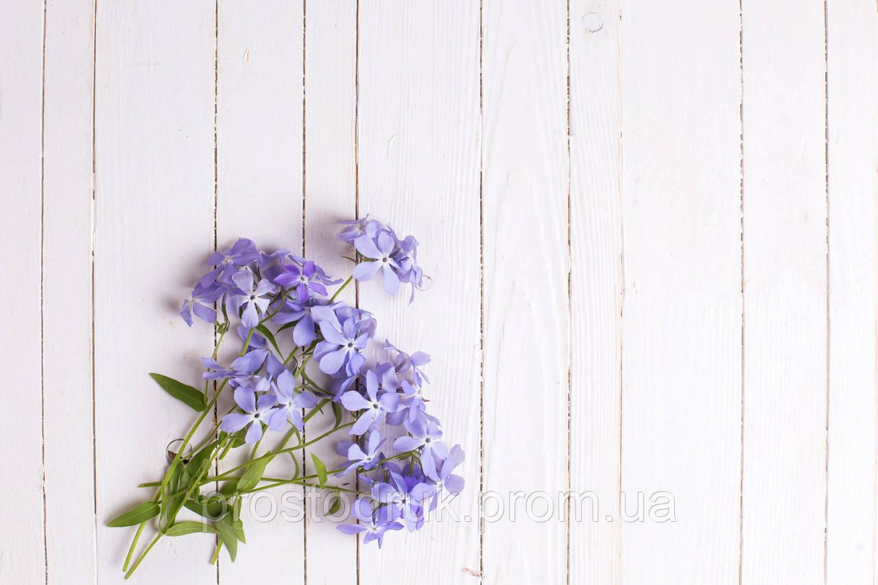Сині квіти на світлійдошці, фотофон 90х60см