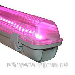 Светильник LED Т8 FITO 1200 мм 18W 5/1 спектр