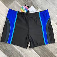 Плавки шорты купальные мужские Paidi, размеры 50-58, чёрные, 6236