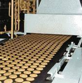 Печь газовая туннельного типа А2-ШБГ