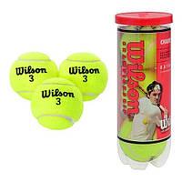 Тенисные мячи MS 0351 3 шт в колбе