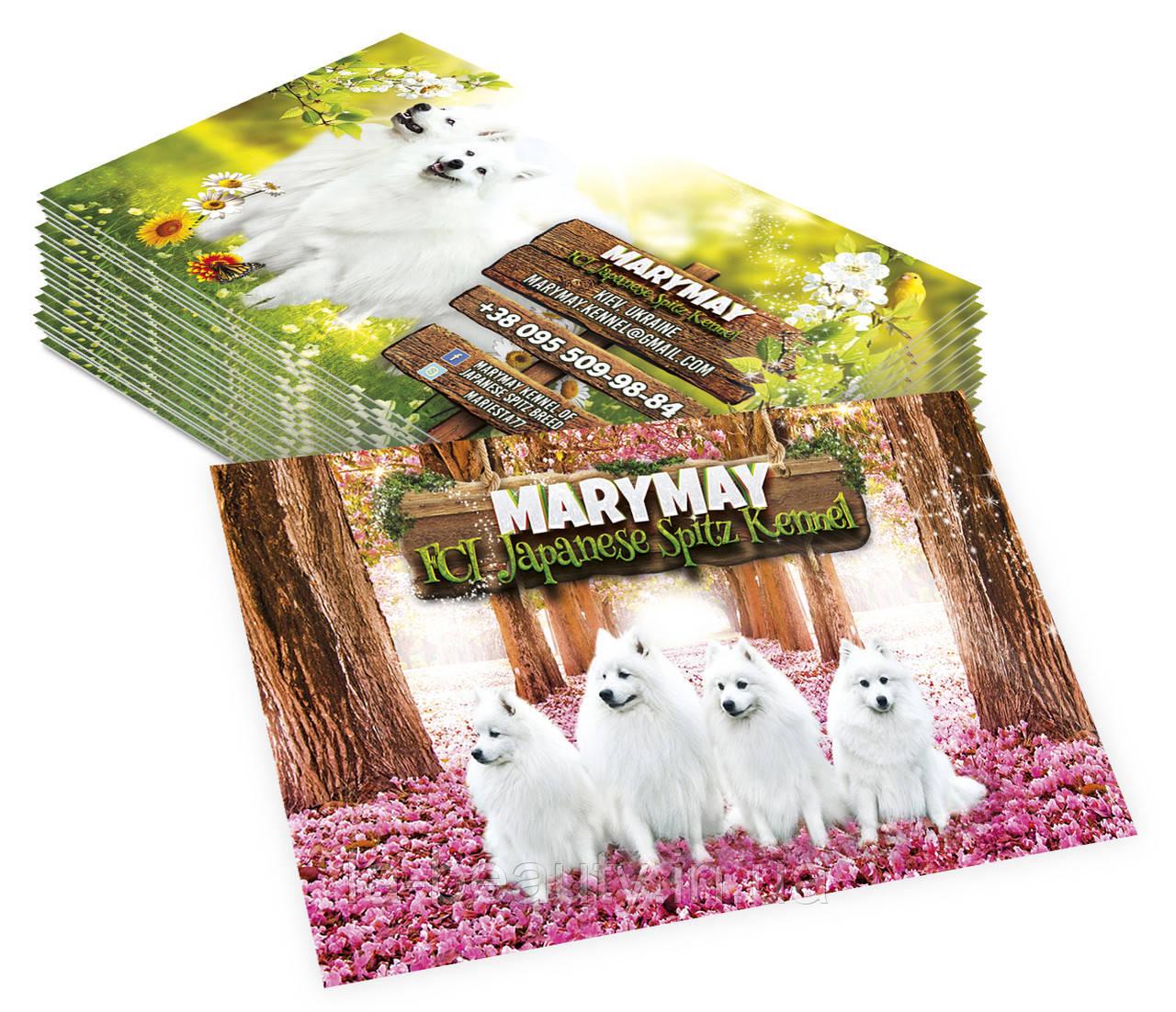 Дизайн визиток питомника собак (японский шпиц)