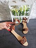 Женские кожаные босоножки сандалии на низком ходу (рыжий леопард), фото 3
