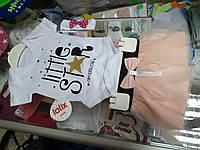 Костюм ясельный Боди с фатиновой юбкой для девочки р.62 - 80