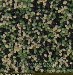 Всі кольори в наявності Мозаїчна штукатурка ТермоБраво 25кг М42
