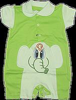 Песочник-футболка с воротником поло, с вышивкой, хлопок (кулир), ТМ Лио, р. 74, Украина