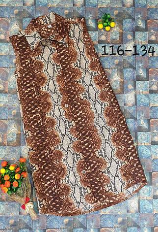 Платье - рубашка с карманами р.116-134 опт, фото 2