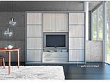 Гостиная-купе Наоми с нишей под ТВ (Мебель стар) 2700х550х2200, фото 2