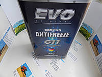 Антифриз 5л концентрат EVO