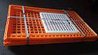 Ящик для перевозки птиц Piedmont Coop 970х580х270 мм, фото 6