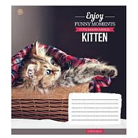 Тетрадь 12 листов клетка Kittens Funny Moments , в ассортименте