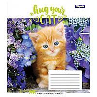 Тетрадь  А5/12 клетка  1 Вересня  Hug Your Cat   761703, фото 1