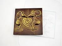 Пластиковая форма для шоколада С первого писка