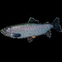 Подушка-іграшка Антистрес Риба «Форель» (гігант)