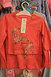 Кофточка для дівчинки 56,68,74,80,86 зростання Польща арт 045., фото 2