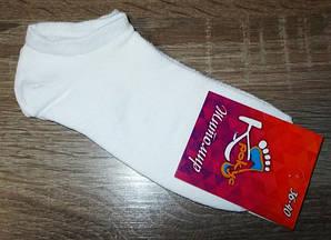 Носки женские короткие белые хлопок размер 36-40