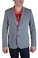 Пиджак мужской T.Cassano 100 52 светло-серый бордо