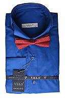 Рубашка VELS 34 кл. (бабочка) 2XL ярко синий