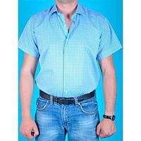 Рубашка VELS 3406/5 XL белая голуб. клетка