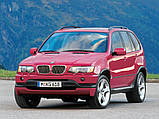 Автомобильные коврики BMW X5 (E53) 1999- Stingray, фото 8
