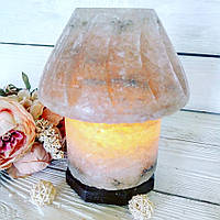 Солевая лампа «Торшер» 5-6кг