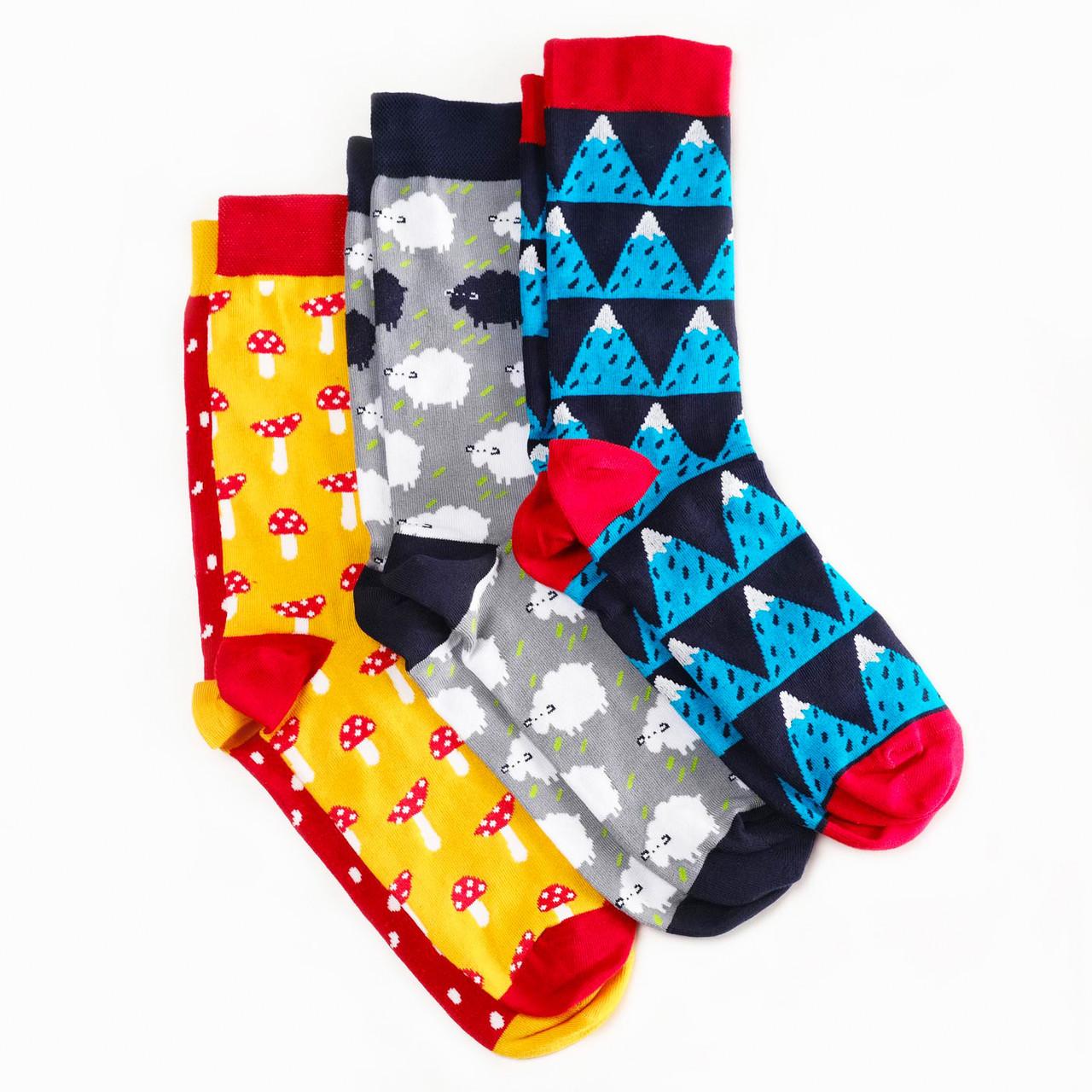 Носки Dodo Socks набор Yukon 39-41, 3 шт