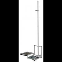 Ростомер напольный с весами механическими (электронными) РПВ-2000, Ростомер медицинский с весами