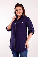 Блуза стильная в расцветках  50483, фото 1