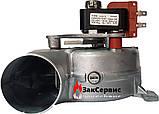 Вентилятор на газовый котел Ariston Microgenus, TX, T2 23 MFFI999397, фото 3
