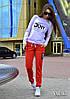 Костюм женский DKNY свитшот и брюки трикотаж джерси 4 цвета DV227